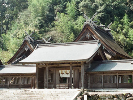 tanaka_spot.jpg